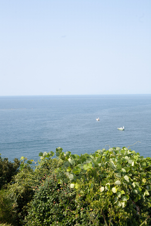 Summer scenary of the sea in Kanagawa, Japan