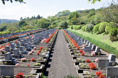 Landscape Japanese modern well maintained grave site with red and pink flowers