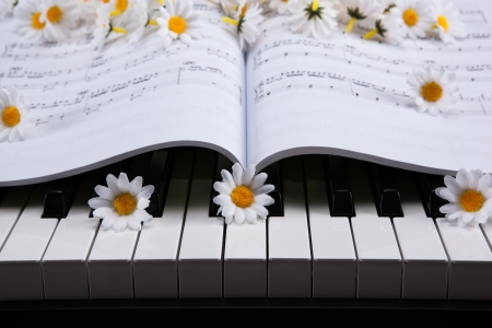 black and white keys of the piano closeup and musical book Stock Photo - 24923415