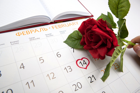 man escorts date 14 February of a year in calendar  holding rose flower photo