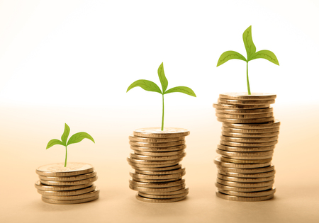 emolument: stacks of coins with sprouts close up Stock Photo