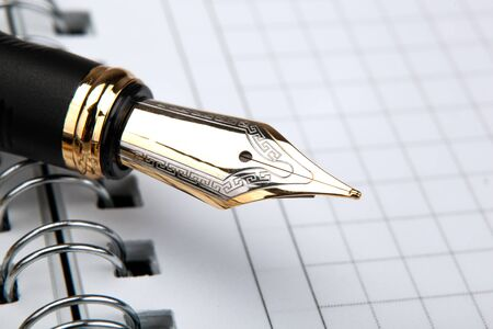 fountain pen on the notepad with paper in a cage closeup Stockfoto