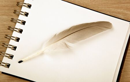 bird feather in the form of a pen on a white notebook top view