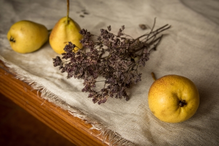 pears and oregano are on linen tablecloth, natural ligth photo