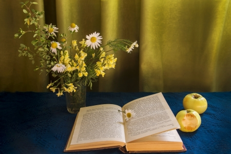 summer bouquet, open  book and two apples photo