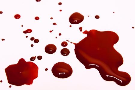 spatters: Macchie di sangue su uno sfondo bianco