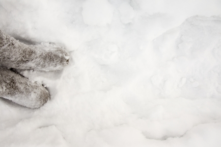 destitution: Russian winter concept. Boots (valenki)  over snow background.