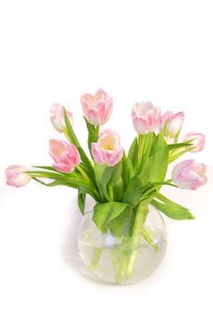 angled view: Pretty pink tulips in glass vase isolated on white background.