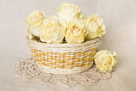 Weiß getrockneten Rosen im Korb mit gestrickten Deckchen über Leinen Hintergrund Standard-Bild