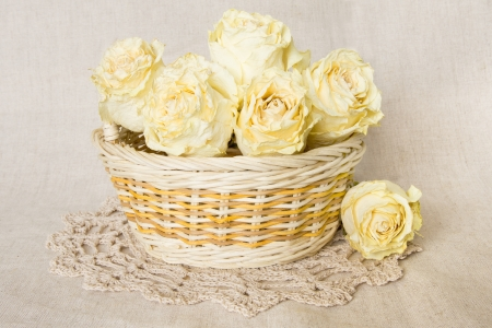 White dried roses in basket with knitted doily over linen background  photo