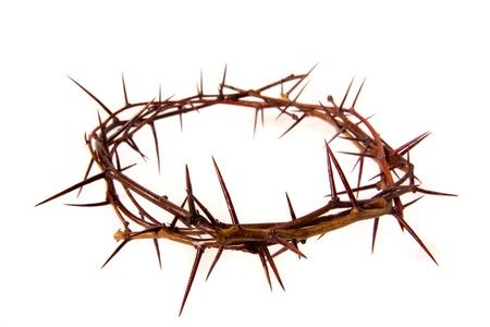 tumbas: Corona de espinas aisladas en fondo blanco, copia spase. Concepto cristiano del sufrimiento.
