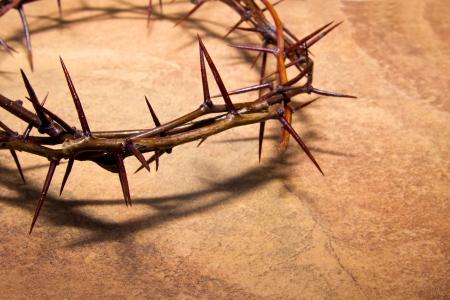 �pines: Couronne d'�pines sur fond de marbre brun, copie spase. Concept chr�tien de la souffrance.