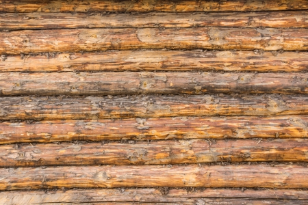 Wall of raw logs texture close up horizontal, traditional country house, construction, wooden architecture. Stock Photo - 19602268