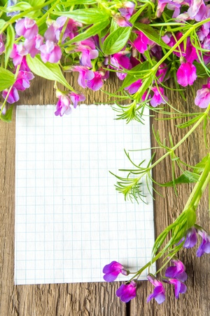 Violet wild spring flowers and white blank card with sample text over rustic wooden background (texture, surface) vertical, close up Stock Photo - 19988961