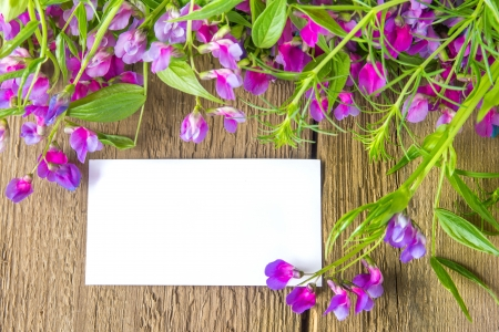 Violet wild spring flowers and white blank card with sample text over rustic wooden background (texture, surface) horizontal, close up Stock Photo - 19988963