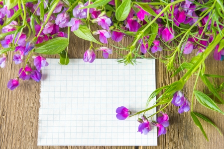 Violet wild spring flowers and white blank card with sample text over rustic wooden background (texture, surface) horizontal, close up Stock Photo - 19988962