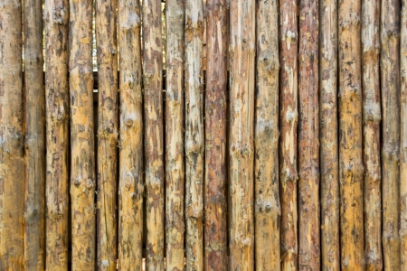 Wall of raw logs texture close up horizontal, traditional country house, construction, wooden architecture. photo