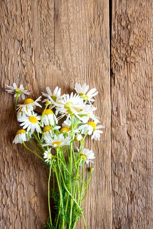 marguerite: Marguerites bouquet sur bois rustique fond, texture