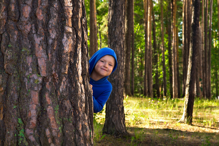 strong boy: Happy beautiful child (boy) hugging pine, hiding, playing and having fun outdoor in summer forest (park) Stock Photo