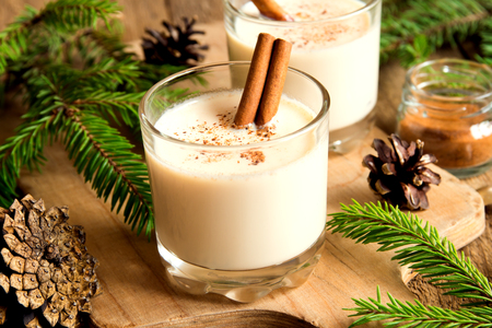 Eggnog with cinnamon for Cristmas and winter holidays Reklamní fotografie - 47556129