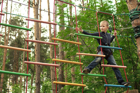 Happy little boy enjoying climbing at adventure park. Boy having fun in forest. Stok Fotoğraf
