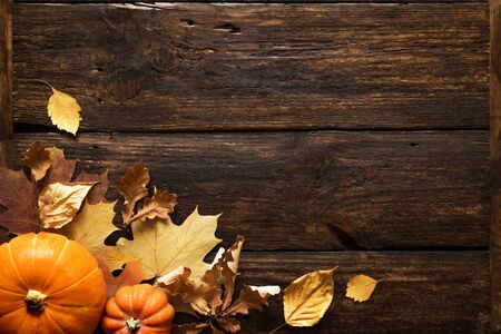 Thanksgiving ou fond de vacances d'automne, vue de dessus, espace de copie. Composition de vacances d'automne avec citrouilles, noix, feuilles jaunes.