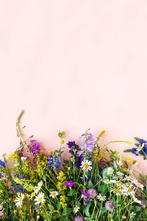Summer Flowers. Creative layout of wild flowers on pink background, top view, copy space. Summer or eco friendly lifestyle concept.