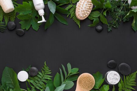 Natural cosmetics and green leaves on black background, copy space. Natural organic skincare, bio research and healthy lifestyle concept. Banco de Imagens