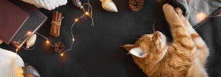 Winter cozy composition with ginger cat. Seasonal Christmas coziness with cat, soft plaid, garland and books. Cozy home and Christmas hygge concept, copy space, banner.