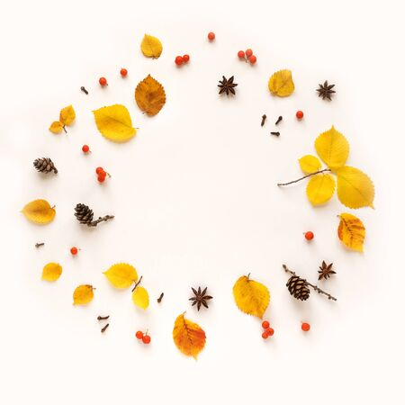 Yellow elm leaves flat lay, copy space. Autumnal yellow leaves isolated on white background, creative seasonal layout, autumn concept. Banque d'images