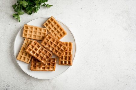 Chaffles - egg and cheese waffles for breakfast. Keto (ketogenic) recipe - morning savory protein waffles, top view, copy space. 写真素材