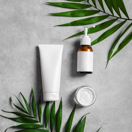 Natural cosmetic cream, body lotion and green plants on gray stone background, top view. Dermatology, organic skin care and spa concept with green palm leaves.