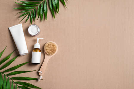 Natural cosmetic cream, body lotion, massage brush and green plants on beige background, top view, copy space. Dermatology, organic skin care and spa concept with green palm leaves. 免版税图像