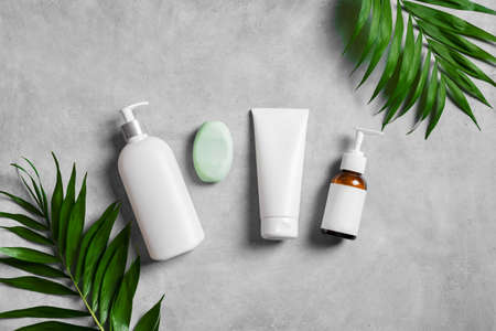 Organic cosmetic cream, body lotion and green plants on gray stone background, top view. Dermatology, natural skin care and spa concept with green palm leaves. 免版税图像