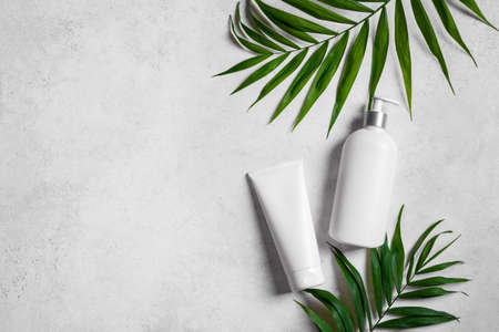 Natural cosmetic cream, body lotion and green plants on light stone background, top view, copy space. Dermatology, organic skin care and spa concept with green palm leaves.
