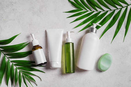 Natural cosmetic products and green plants on gray stone background, top view. Dermatology, organic skin care and spa concept with green palm leaves. 免版税图像