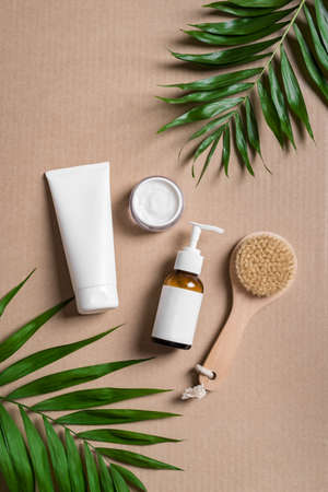 Organic cosmetic cream, body lotion, massage brush and green plants on beige background, top view. Dermatology, natural skin care and spa concept with green palm leaves. 免版税图像