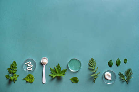 Natural skin care products in petri dish and green leaves on green background, top view, copy space. Natural eco beauty, herbal cosmetic laboratory and organic skin care concept.