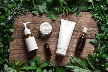 Cosmetic skin care products (body lotion, hair shampoo, face creme, essential oil) on green leaves as background, top view. Natural eco beauty and organic green skin care concept.