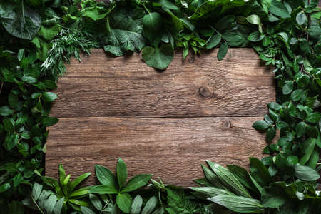 Green leaves and wooden background, creative layout, copy space. Nature, eco, environment concept.