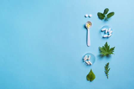 Homeopathy, naturopathy and alternative herbal medicine. Capsules and pills, green plant leaves on blue background, top view, copy space. 免版税图像