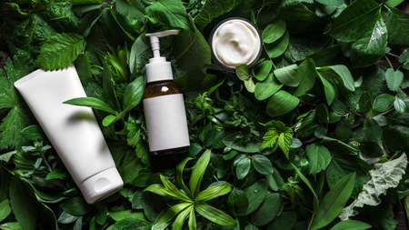 Cosmetic skin care products (body lotion, hair shampoo, face creme) on green leaves as background, top view, copy space. Natural eco beauty and organic green skin care concept.