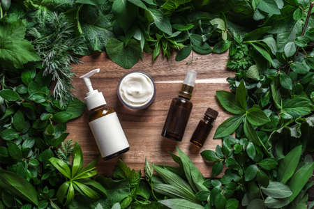Cosmetic skin care products (body lotion, hair shampoo, face creme) on green leaves as background, top view. Natural eco beauty and organic green skin care concept.
