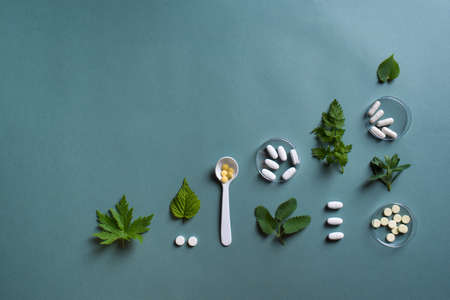 Homeopathy, naturopathy and alternative herbal medicine concept. Capsules and pills, green plant leaves on green background, top view, copy space.