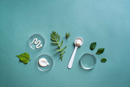 Natural skin care products in petri dish and green leaves on green background, banner, copy space. Natural eco beauty, cosmetic laboratory and organic skin care concept. 免版税图像
