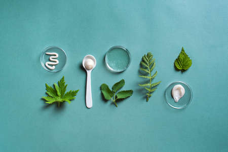 Natural skin care products in petri dish and green leaves on green background, top view. Natural eco beauty, herbal cosmetic laboratory and organic skin care concept.