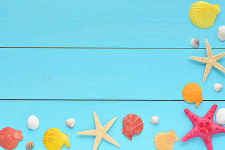 plate: Summer sea background - shells, star on a wooden background