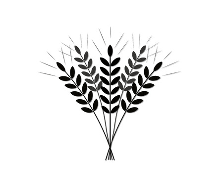 Silhouette (icon) of the crop of agriculture (grain of wheat)