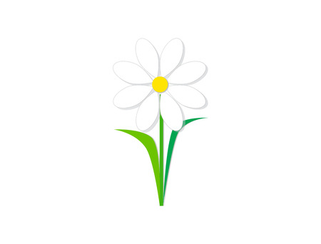 Design icon vector illustration of a flower (chamomile).