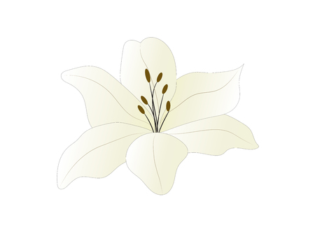 White with a yellow shade of lily. flower icon. Vector design illustration. Ilustração